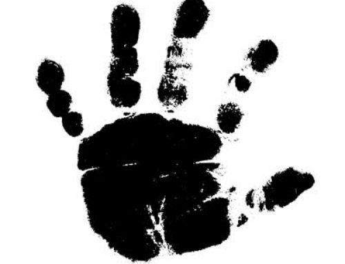 L'Empreinte de naissance, 27 mois pour une vie